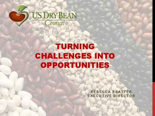 Turning Challenges Into Opportunities preview