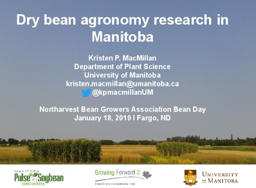 Dry Bean Agronomy Research in Manitoba preview