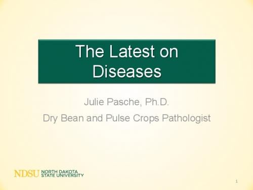 The Latest on Diseases preview